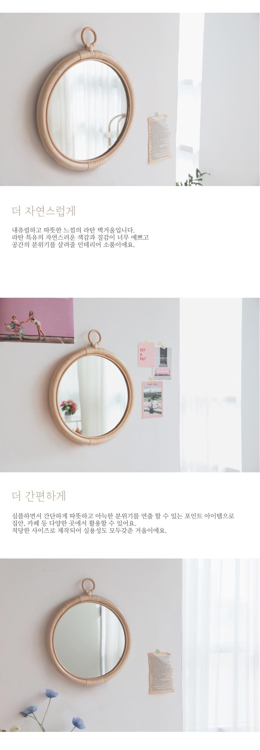 lattan_frame_mirror_02.jpg