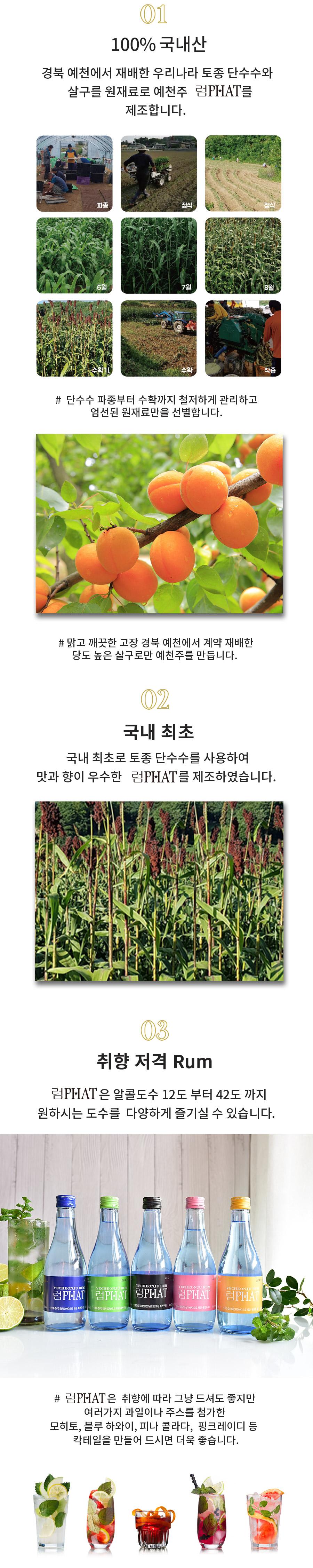 02-럼6병-핑크_02.jpg