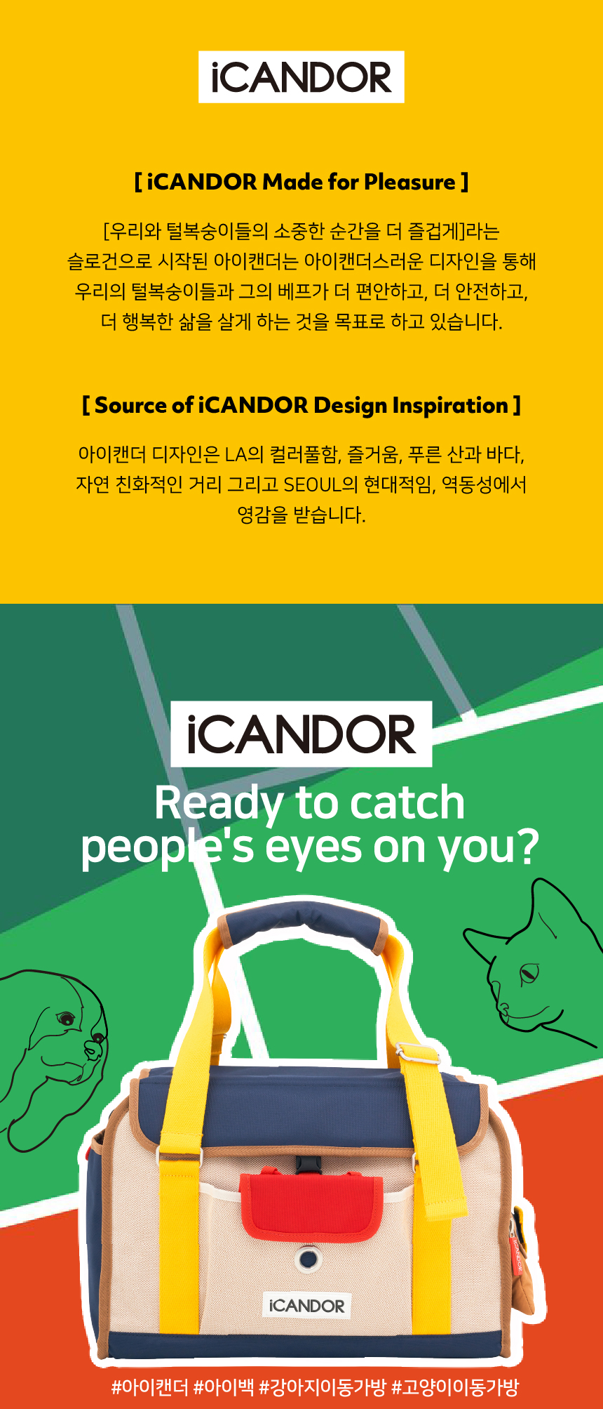 아이캔더(ICANDER) 아이백 &플러피쿠션 콤보세트 2가지 컬러